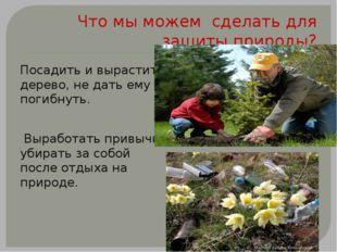Что мы можем сделать для защиты природы? Посадить и вырастить дерево, не дать