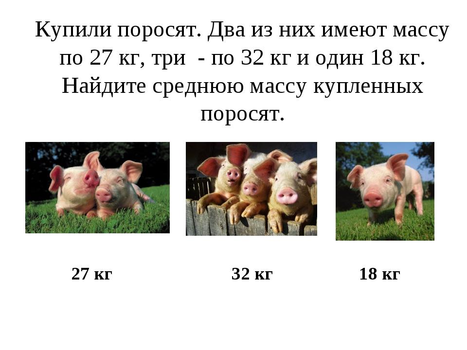 Купили поросят. Два из них имеют массу по 27 кг, три - по 32 кг и один 18 кг....