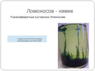 Ломоносов - химик Цианоферратные кустарники Ломоносова Хлорид железа (III) Fe