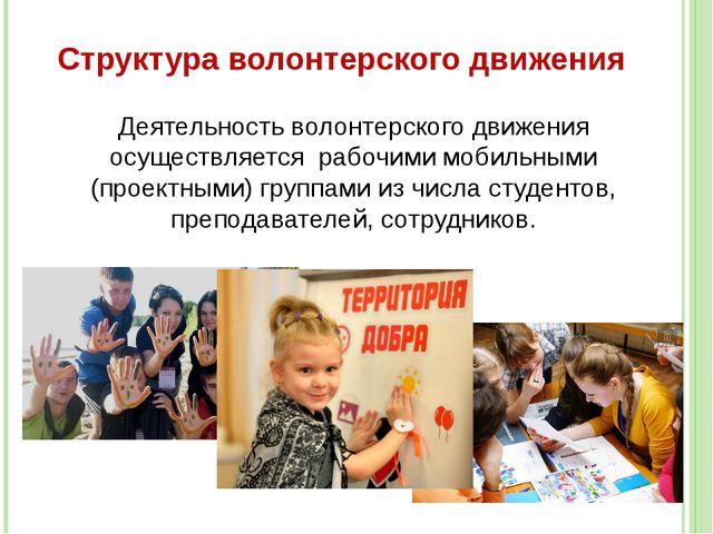 Структура волонтерского движения Деятельность волонтерского движения осуществ...