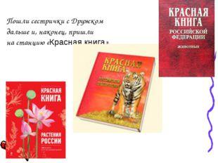 Пошли сестрички с Дружком дальше и, наконец, пришли на станцию «Красная книг