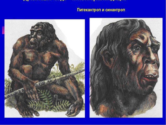 Древнейшие люди - Человек прямоходящий Питекантроп и синантроп