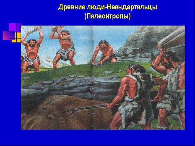 Древние люди-Неандертальцы (Палеонтропы)