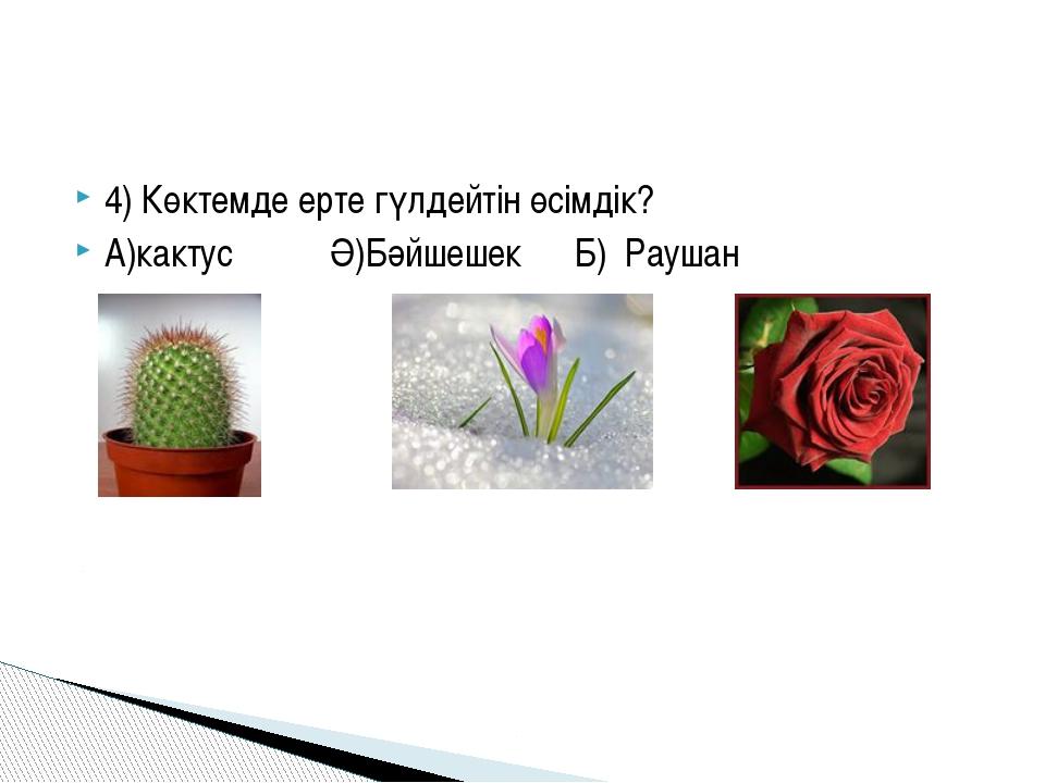 4) Көктемде ерте гүлдейтін өсімдік? А)кактусӘ)БәйшешекБ) Р...