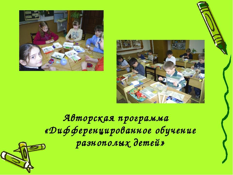 Авторская программа «Дифференцированное обучение разнополых детей»