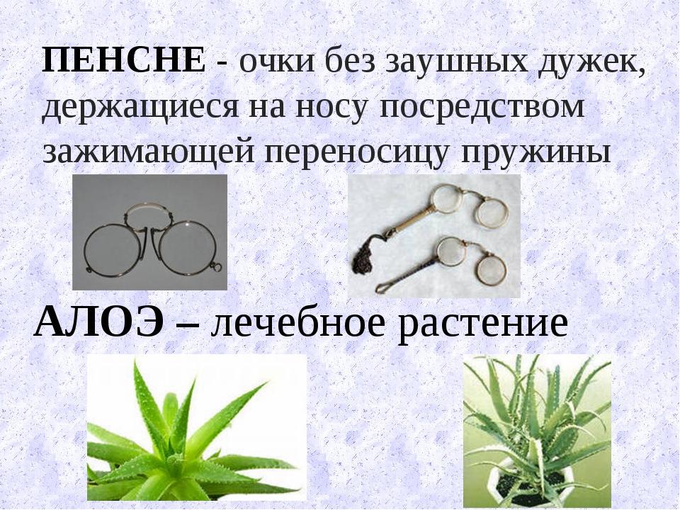 АЛОЭ – лечебное растение ПЕНСНЕ - очки без заушных дужек, держащиеся на носу...