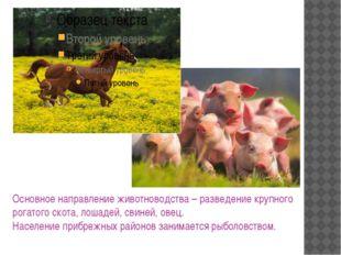Основное направление животноводства – разведение крупного рогатого скота, лош
