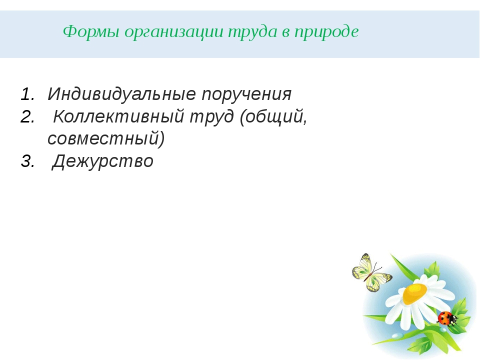 Формы организации труда в природе Индивидуальные поручения Коллективный труд...
