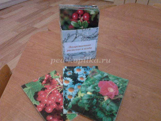 http://ped-kopilka.ru/upload/blogs/13577_61e12af5834c1f9d72063c3c7b8af714.jpg.jpg