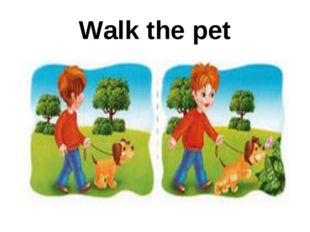 Walk the pet