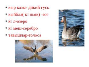 кыр казы- дикий гусь кыйбла( көньяк) –юг күл-озеро көмеш-серебро тавышлар-гол