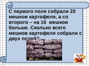 С первого поля собрали 20 мешков картофеля, а со второго – на 16 мешков боль