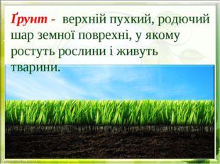 Ґрунт - верхній пухкий, родючий шар земної поврехні, у якому ростуть рослини