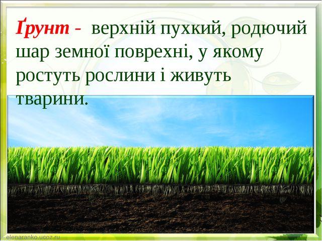 Ґрунт - верхній пухкий, родючий шар земної поврехні, у якому ростуть рослини...