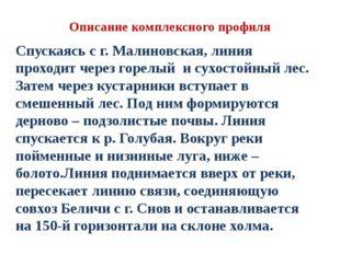 Описание комплексного профиля Спускаясь с г. Малиновская, линия проходит чере