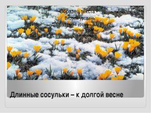 Длинные сосульки – к долгой весне