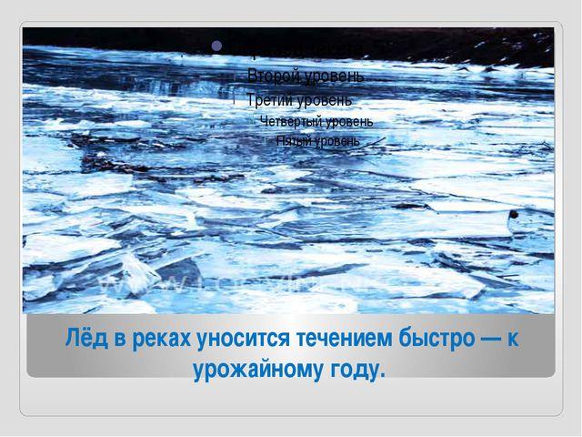 Лёд в реках уносится течением быстро — к урожайному году.
