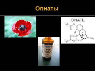 Опиаты