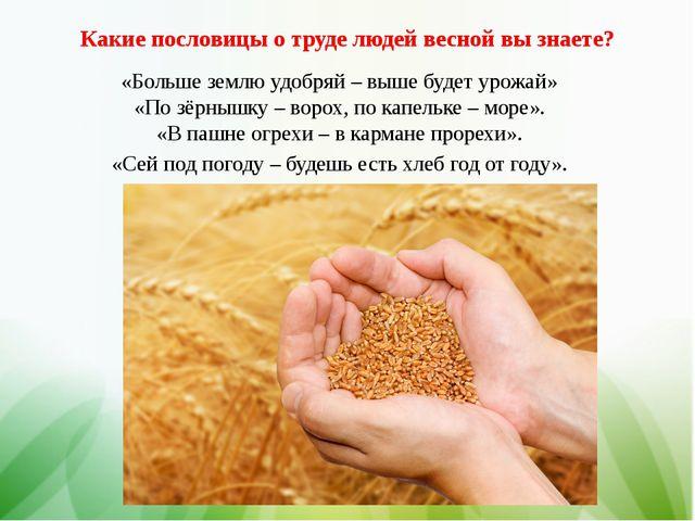 Какие пословицы о труде людей весной вы знаете? «Больше землю удобряй – выше...