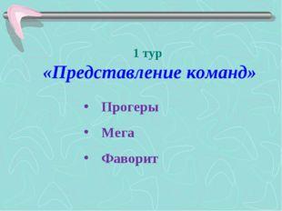 1 тур «Представление команд» Прогеры Мега Фаворит
