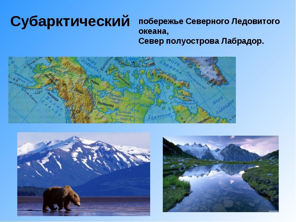 Субарктический побережье Северного Ледовитого океана, Север полуострова Лабра...