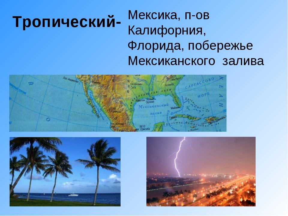 Тропический- Мексика, п-ов Калифорния, Флорида, побережье Мексиканского залива