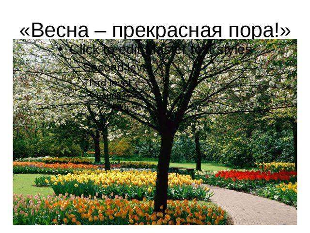 «Весна – прекрасная пора!»