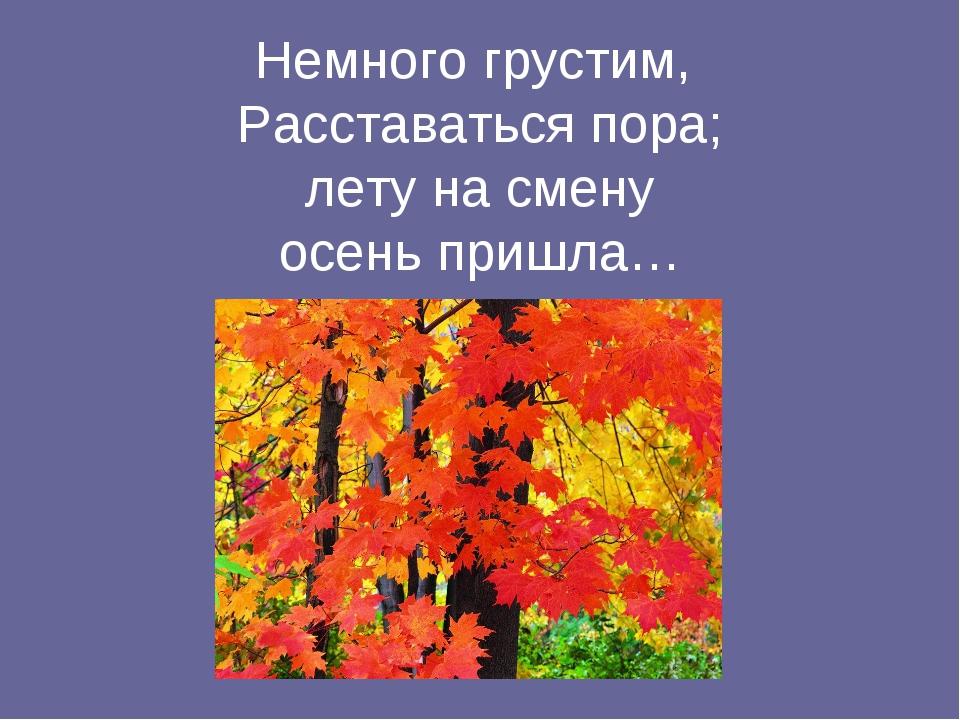 Немного грустим, Расставаться пора; лету на смену осень пришла…