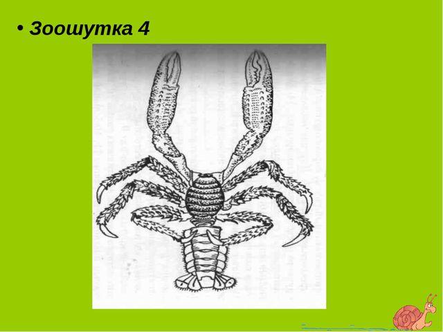 Зоошутка 4