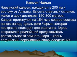 Каньон Чарын Чарынский каньон, находится в 200 км к востоку от Алматы. Высота