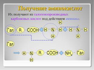Получение аминокислот Их получают из галогенопроизводных карбоновых кислот по