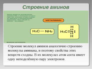 Строение аминов Строение молекул аминов аналогично строению молекулы аммиака,