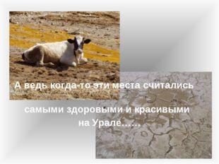 А ведь когда-то эти места считались самыми здоровыми и красивыми на Урале……