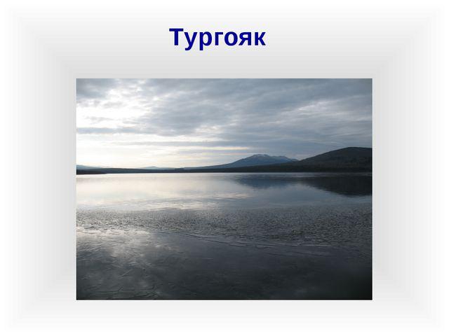 Тургояк