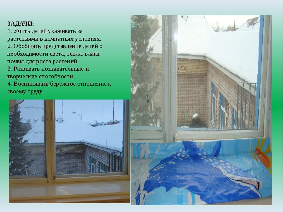 ЗАДАЧИ: 1. Учить детей ухаживать за растениями в комнатных условиях. 2. Обобщ...