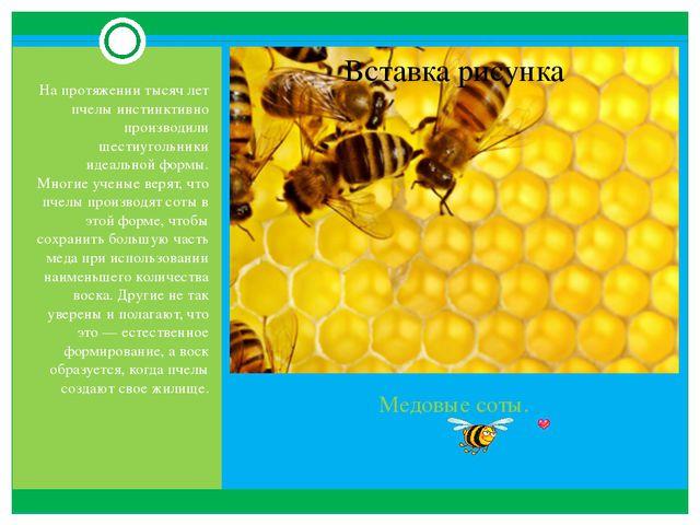 Медовые соты. На протяжении тысяч лет пчелы инстинктивно производили шестиуго...
