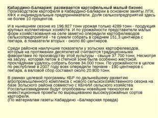 Кабардино-Балкария: развивается картофельный малый бизнес  Производством к