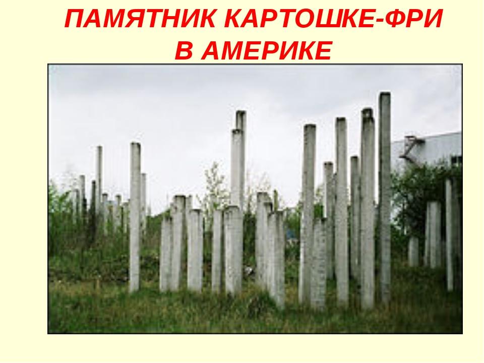 ПАМЯТНИК КАРТОШКЕ-ФРИ В АМЕРИКЕ