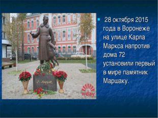 28 октября 2015 года в Воронеже на улице Карла Маркса напротив дома 72 устан