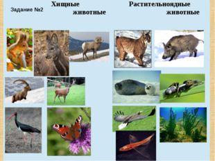 Задание №2 Хищные животные Растительноядные животные