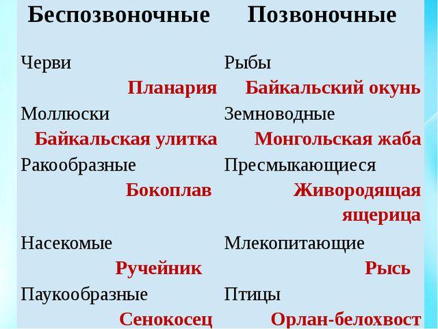 Беспозвоночные Позвоночные Черви Планария Рыбы Байкальский окунь Моллюски Бай...