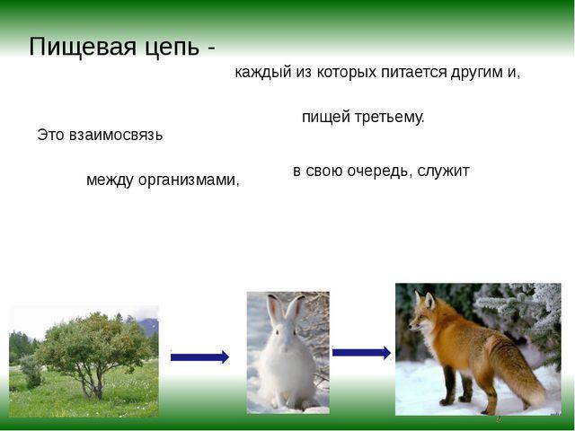Пищевая цепь - Это взаимосвязь между организмами, каждый из которых питается...