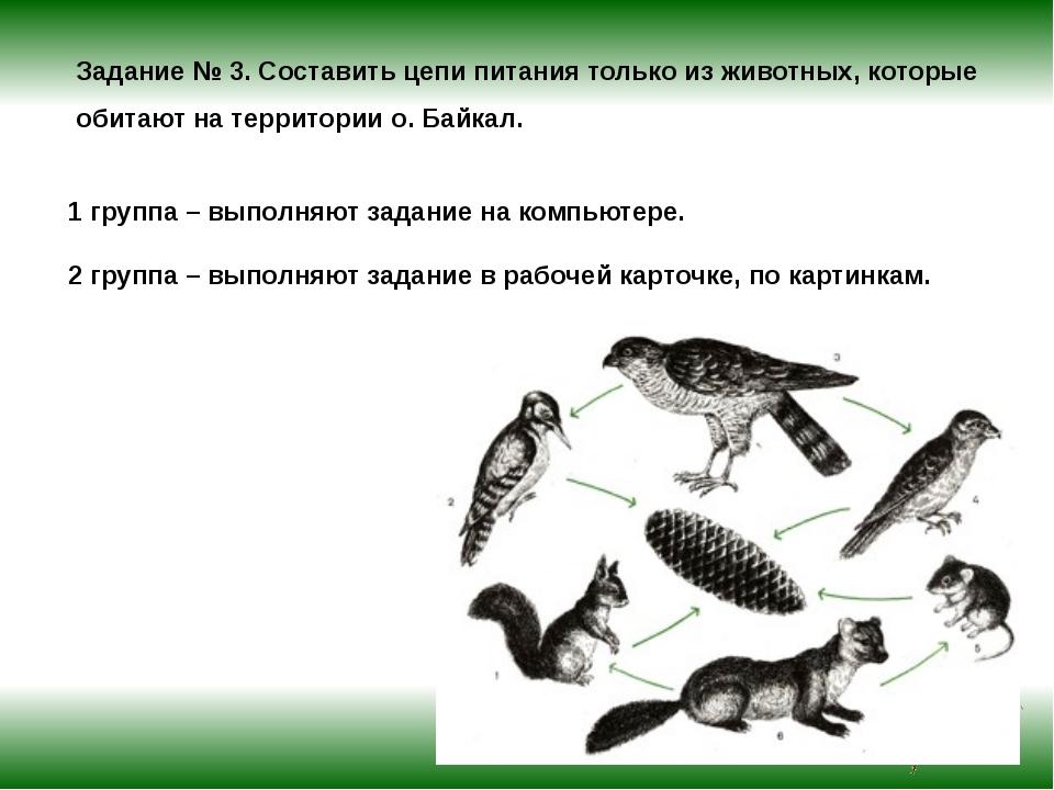 Задание № 3. Составить цепи питания только из животных, которые обитают на те...