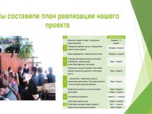 Мы составили план реализации нашего проекта № Мероприятие Срок реализации 1 И