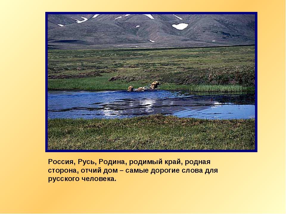 Россия, Русь, Родина, родимый край, родная сторона, отчий дом – самые дорогие...