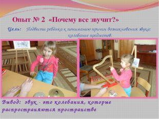 Опыт № 2 «Почему все звучит?» Цель: Подвести ребёнка к пониманию причин возни