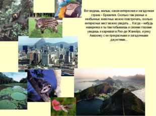 Вот видишь, малыш, какая интересная и загадочная страна – Бразилия. Сколько т
