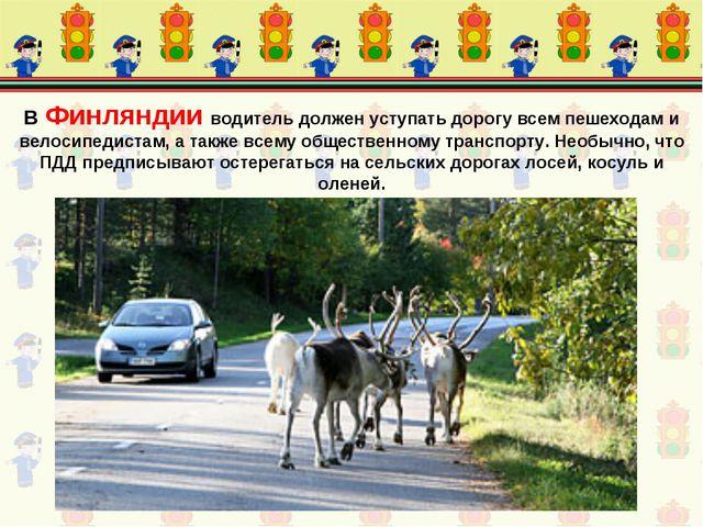 В Финляндии водитель должен уступать дорогу всем пешеходам и велосипедистам,...