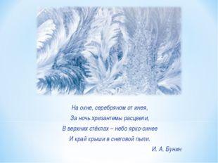 На окне, серебряном от инея, За ночь хризантемы расцвели, В верхних стёклах