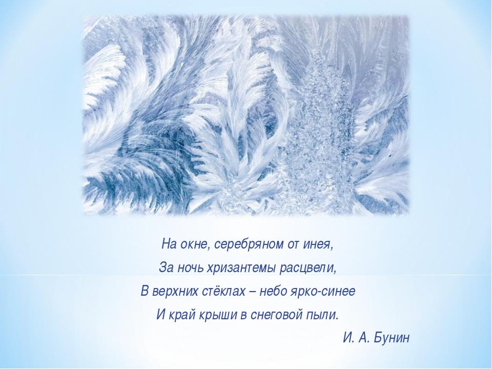 На окне, серебряном от инея, За ночь хризантемы расцвели, В верхних стёклах...